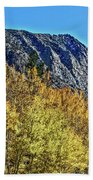 Bishop Creek Mountains Beach Towel