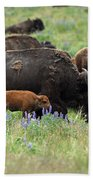 Bison And Lupine Beach Towel
