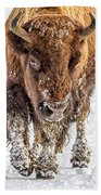 Bison Approaching  8163 Beach Towel