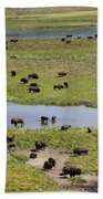 Bison Herd And Yellowstone River Beach Towel
