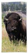 Bison In Grass Beach Towel