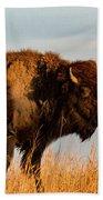 Bison Pair Beach Towel