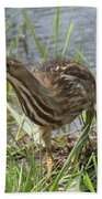 Bittern Beach Towel