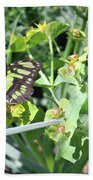 Black And Green Butterfly Beach Towel
