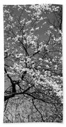 Black And White Blossoms Beach Towel