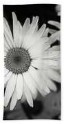 Black And White Daisy 1 Beach Towel