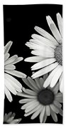 Black And White Daisy 2 Beach Towel