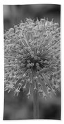 Black And White Flowers Beach Towel