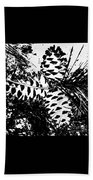 Black And White Pine Cone Beach Towel