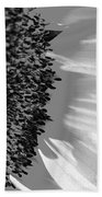Black And White Sunflower Beach Towel