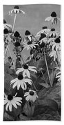 Black And White Susans Beach Towel