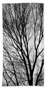 Black And White Tree Branches Silhouette Beach Towel