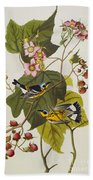 Black And Yellow Warbler Beach Towel