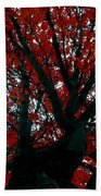 Black Bark Red Tree Beach Towel