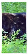 A Florida Black Bear Beach Towel