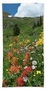Black Bear Pass Landscape Beach Towel by Cascade Colors