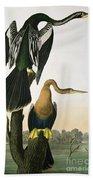 Black Billed Darter Beach Towel by John James Audubon
