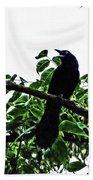 Black Bird Sings Beach Towel