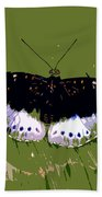 Black Butterfly Beach Towel