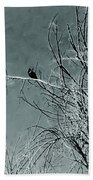 Black Crow White Snow Beach Towel