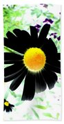 Black Daisy Beach Towel