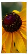 Black Eye Susan Beach Towel