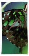 Black Green Tailed Jay 2 Beach Towel