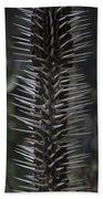 Black Knight. Flora Fantasy 6.14.17  Beach Towel