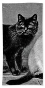 Black Manx And Siamese Cats Beach Towel