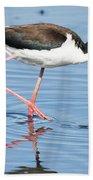 Black-necked Stilt Wading  Beach Towel