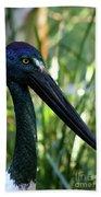 Black Necked Stork 1 Beach Sheet