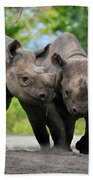 Black Rhinoceroses Beach Towel