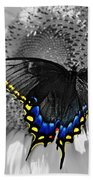 Black Swallowtail And Sunflower Color Splash Beach Sheet