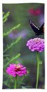 Black Swallowtail Butterfly In August  Beach Towel