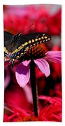 Black Swallowtail Butterfly With Coneflowers And Bee Balm Beach Towel