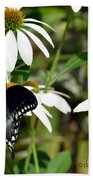 Black Swallowtail Beach Towel