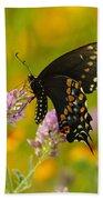 Black Swallowtail Beach Towel by Robert Frederick