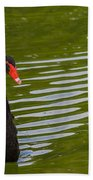 Black Swan II Beach Towel