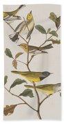 Black Throated Green Warbler Blackburnian Mourning Warbler Beach Towel