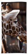 Black Tongue Of The Giraffe Beach Towel