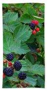 Blackberries 1 Beach Towel