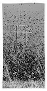 Blackbird Tornado Beach Towel