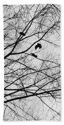 Blackened Birds Beach Towel