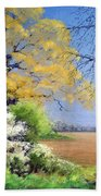 Blackthorn Winter Beach Towel