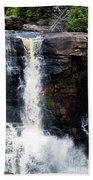 Blackwater Falls #5 Beach Towel