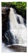 Blackwater Falls #6 Beach Towel