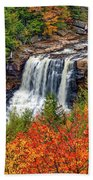 Blackwater Falls  Beach Towel