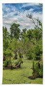 Blackwater Swamp Beach Towel