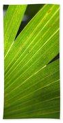 Blades Of Green Beach Towel