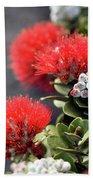 Blazing Blooms Of Ohia Flowers Beach Towel